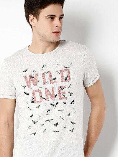 COLINS бежевый мужской футболки короткий рукав<br>Пол: мужской; Цвет: экру меланж; Размер INT: S;