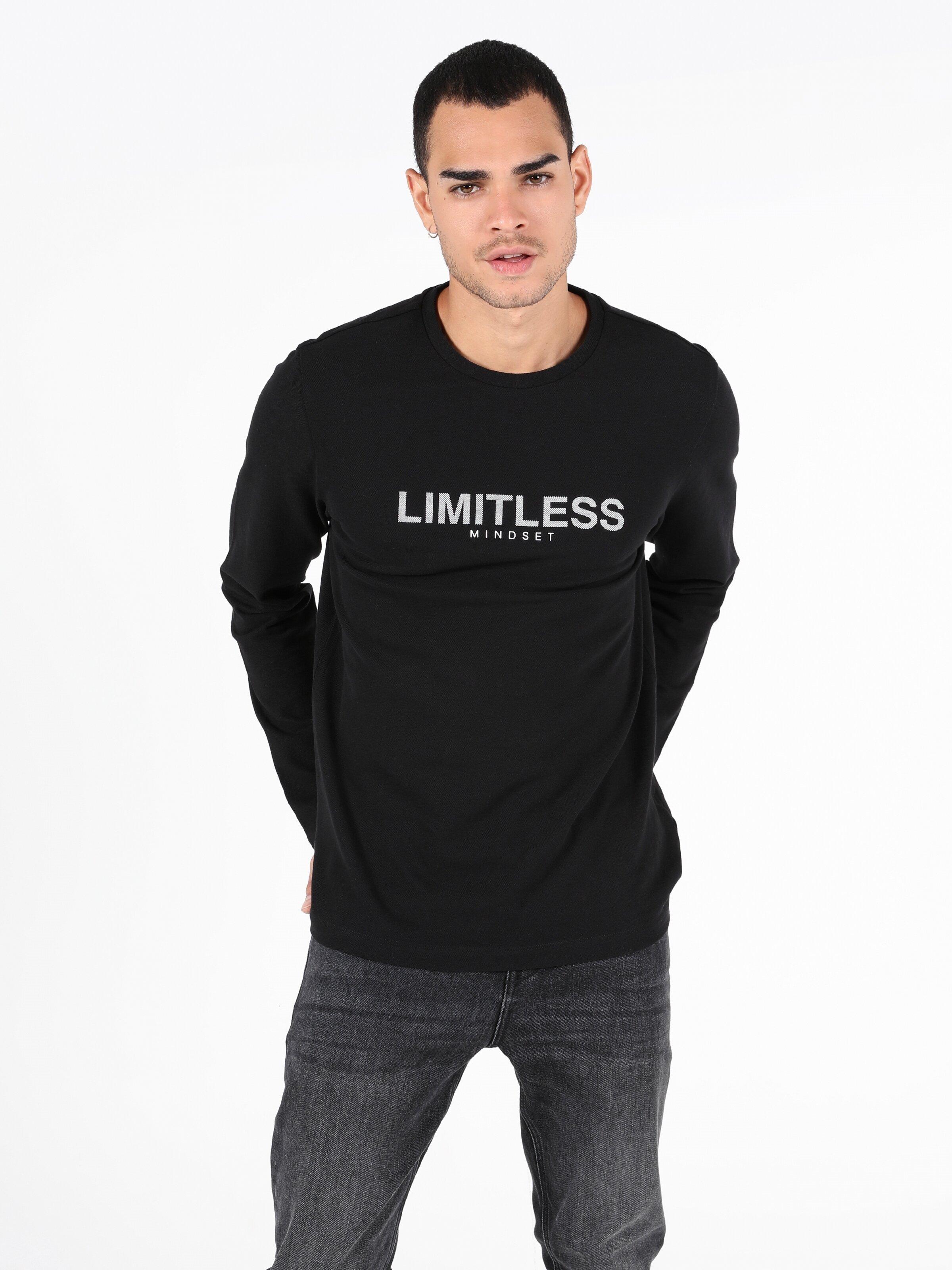 Показать информацию о Мужская футболка с длинным рукавом regular fit CL1050429