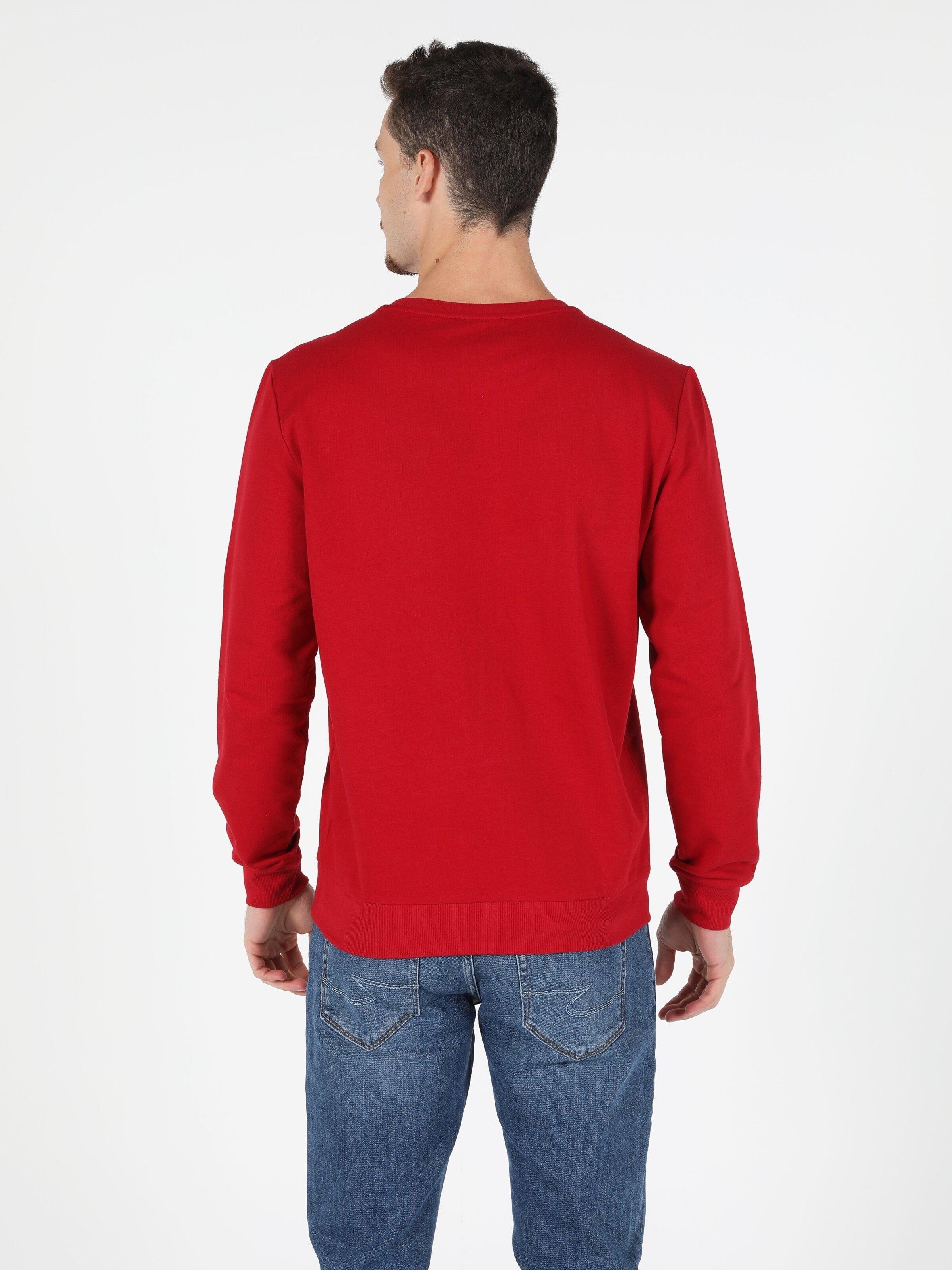 Показать информацию о Мужская толстовка regular fit CL1051989