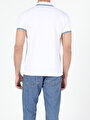 Показать информацию о Мужская футболка-поло regular fit CL1026617