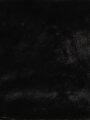 Показать информацию о Женский шарф CL1036848